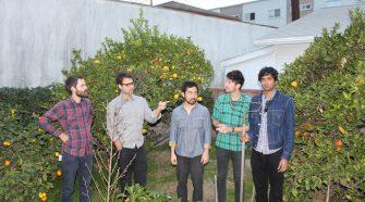 "Foto da banda californiana Young Hunting para resenha do álbum ""True Believers"""