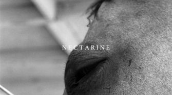 "Capa do álbum ""Nectarine"", do The Funeral Advantage"