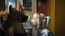 Foto de Margot Robbie no filme Arlequina (2020)