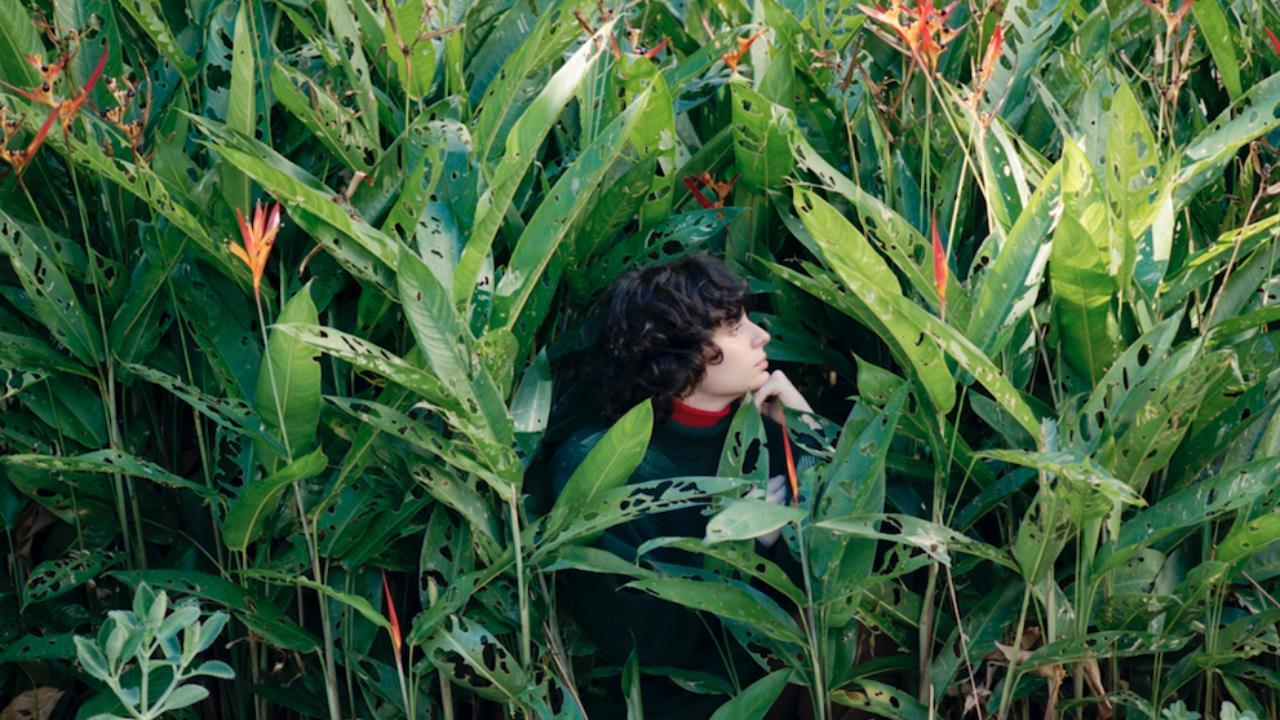 Foto Ana Frango Elétrico